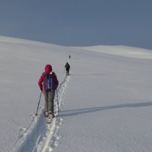 With whom visiting Lyngen Alps with snowshoes