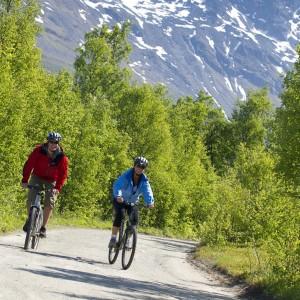 Entreprise de location de vélo pour visiter Kvaloya Norvège