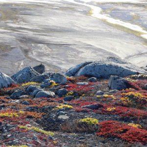 Découvrir les paysages arctiques avec 69 NORD