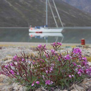 Centre d'activités touristiques extérieures 69 NORD pour expédition arctique